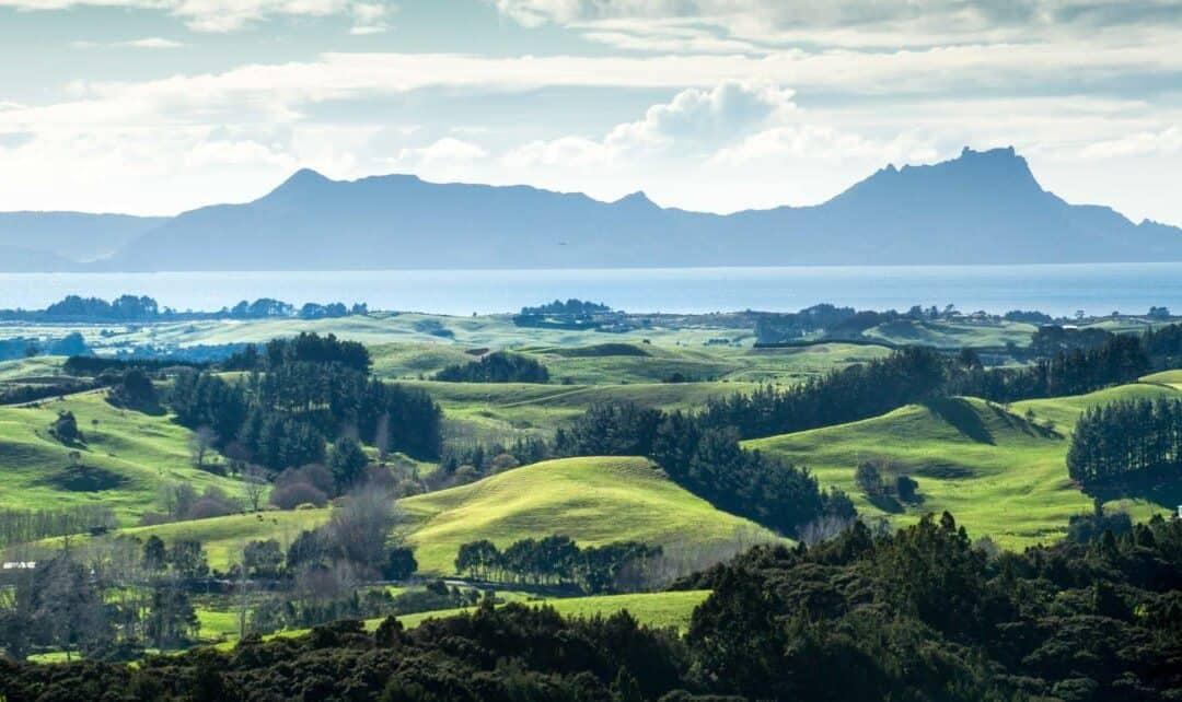 Fiyi y Nueva Zelanda