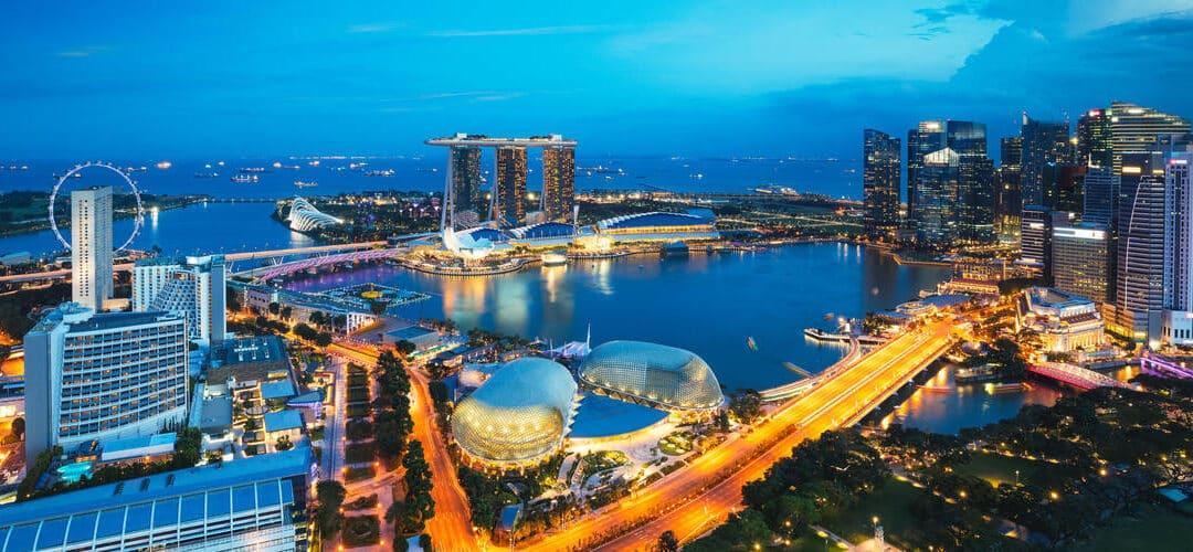 Liderazgo y emprendimiento en Singapur